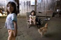 http://www.franziskaagrawal.com/files/gimgs/th-45_45_5-childrenfranziskaagrawal.jpg